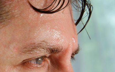 Une perception tactile mal étudiée: l'humidité