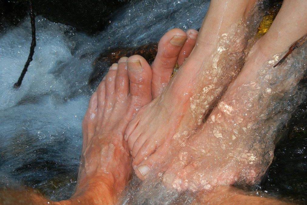 Comment nos mains ont longtemps été moins propres que nos pieds