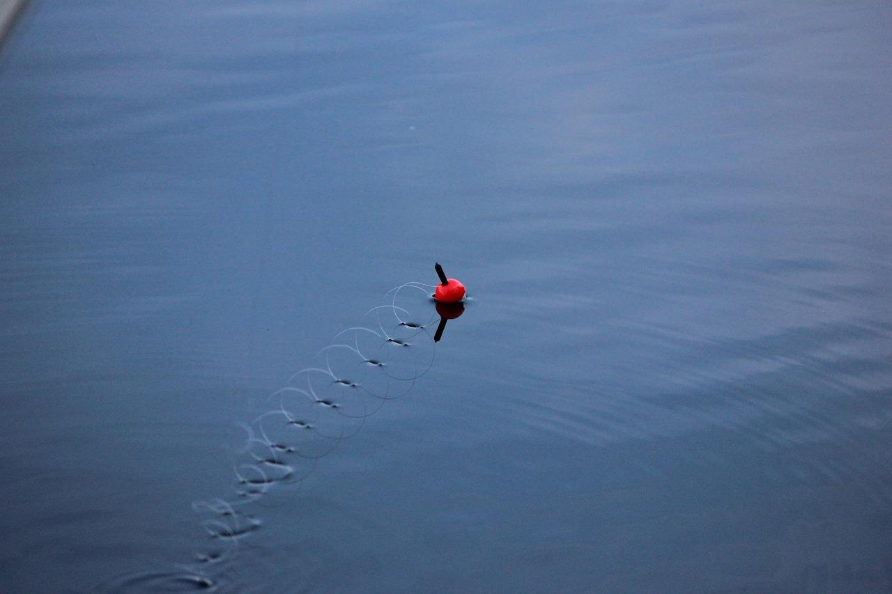 Vibrations du fil de la canne à pêche sur l'eau: sur la surface d'un lac, le fil tourne sur lui-même en une multitude de petites vrilles rejoignant le flotteur qui vient d'être lancé (comme un effet de ricochets à la surface de l'eau).